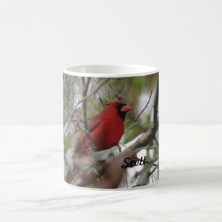 Caneca De Café Personalize a foto cardinal agradável