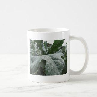 Caneca De Café Pingos de chuva nas folhas da couve-flor