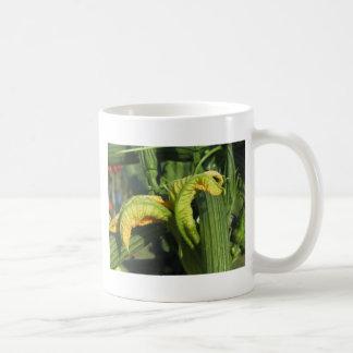 Caneca De Café Planta do abobrinha na flor no jardim vegetal
