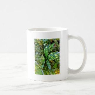Caneca De Café Planta do Croton