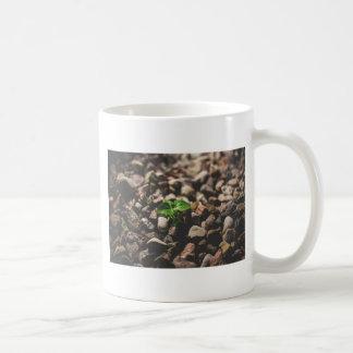 Caneca De Café Planta frondosa verde que começa crescer em