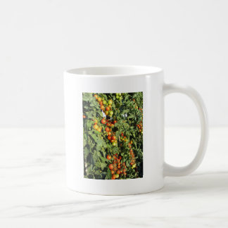 Caneca De Café Plantas de tomate que crescem no jardim
