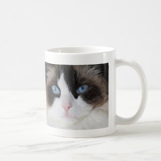 Caneca De Café Querido Eyed azul do gato