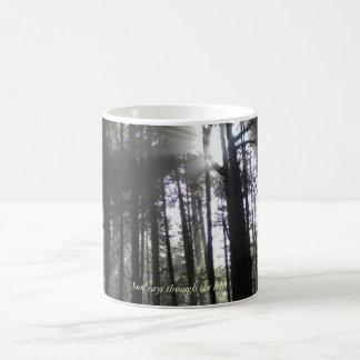 Caneca De Café Raios de Sun através das árvores