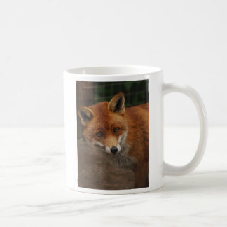 Caneca De Café raposa