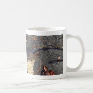 Caneca De Café Rocha do carbonato com fósseis