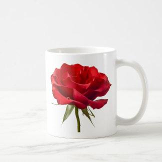 Caneca De Café Rosa vermelha com gota de orvalho no branco