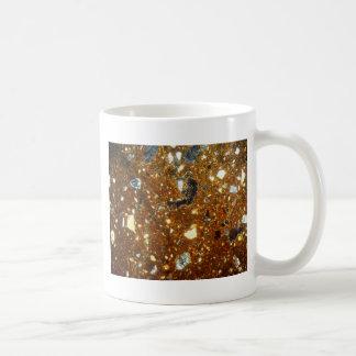 Caneca De Café Seção fina de um tijolo sob o microscópio