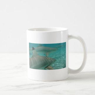 Caneca De Café shark