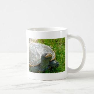 Caneca De Café tartaruga