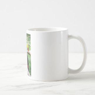 Caneca De Café Toucan bonito