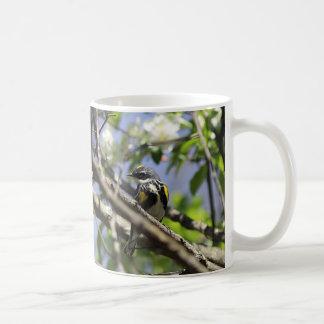 Caneca De Café Toutinegra Amarela-rumped na plumagem do primavera