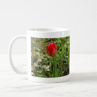 Caneca De Café Tulipa vermelha bonita aproximadamente a abrir