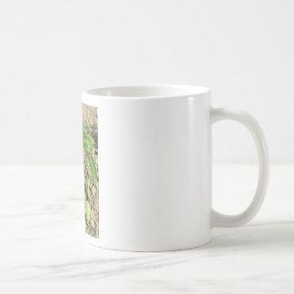 Caneca De Café Única planta fresca da manjericão que cresce no