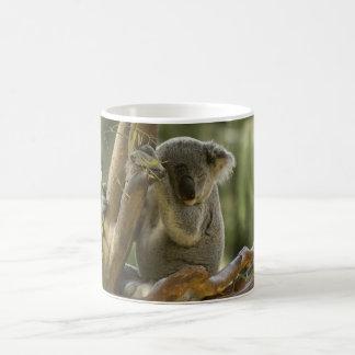 Caneca De Café Urso de Koala sonolento