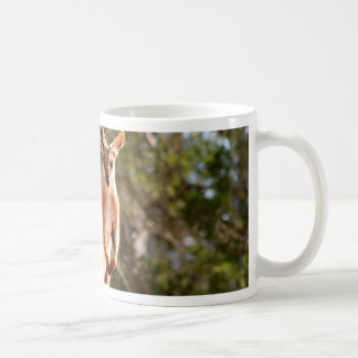 Caneca De Café Wallaby de rocha amarelo-footed australiano