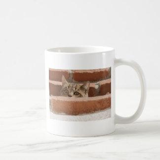 Caneca De Café Wildcat novo curioso da atenção dos olhos de gato