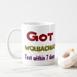 Caneca De Café Wolbachia obtido? Cuidado das centenas por