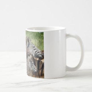 Caneca De Café Zebras África do Sul