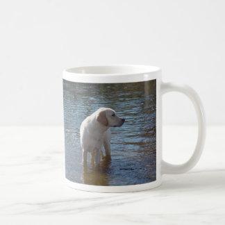 Caneca de labrador retriever no lago