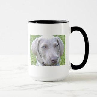 Caneca do cão de Weimaraner