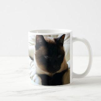 Caneca do gato do gatinho