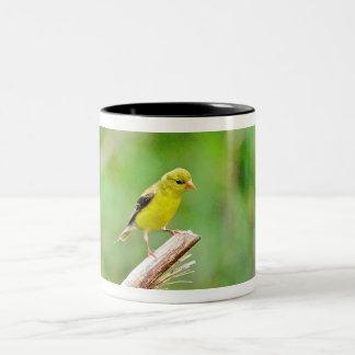 Caneca do Goldfinch