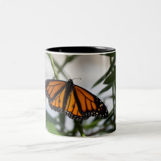 Caneca do monarca
