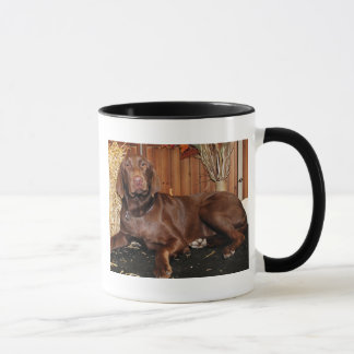 Caneca Dutchess - chocolate Labrador - Photo-13