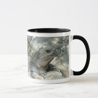 Caneca Iguana Lounging