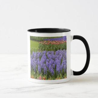 Caneca Jardim da tulipa e do jacinto, jardins de