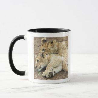 Caneca Jogo de dois filhotes de leões