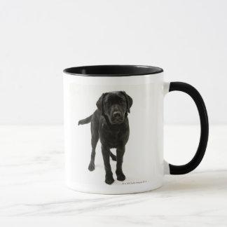 Caneca Labrador retriever preto