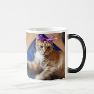 Caneca Mágica Coffee Mug cat