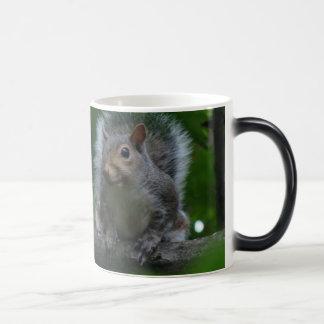 Caneca Mágica esquilo maior