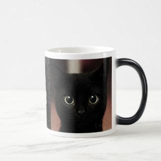 Caneca Mágica Gatos pretos