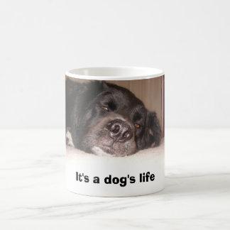 Caneca Mágica kATIE & cO. 053, é a vida de um cão