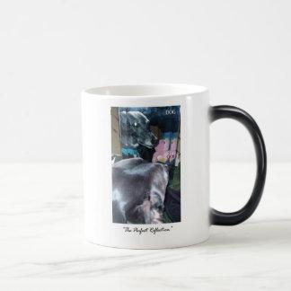 Caneca Mágica Reflexão perfeita - deus/cão