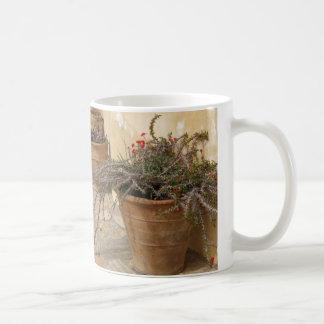 Caneca mediterrânea rústica dos potes da planta