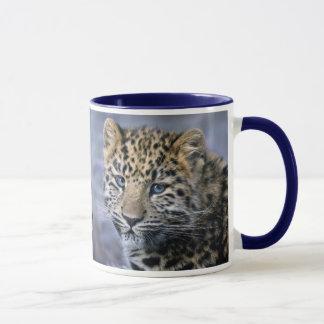 Caneca O leopardo Cub agride