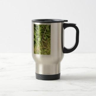 Caneca Térmica Cone da semente de Cypress calvo