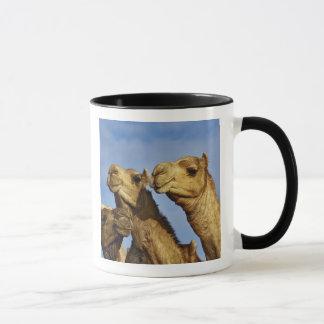 Caneca Trio dos camelos, mercado do camelo, o Cairo,