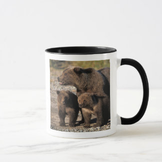 Caneca Urso de Brown, urso de urso, porca com vista dos