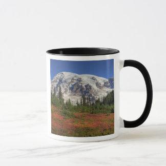 Caneca WA, parque nacional de Monte Rainier, vale do