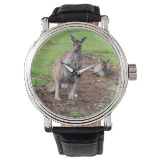 Canguru australiano do fanfarrão, relógio do couro