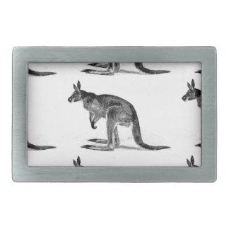 canguru encaixotado - no quadrado