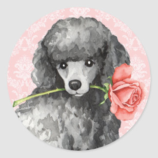 Caniche diminuta do rosa dos namorados adesivo