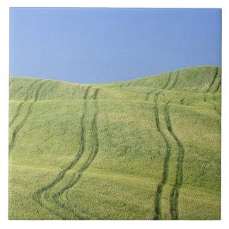 Canse trilhas no campo de trigo, d'Orcia de Val,