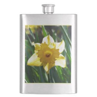 Cantil De Bebida Daffodil amarelo 02.3.