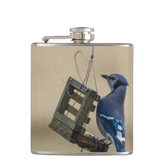 Cantil Jay azul de balanço